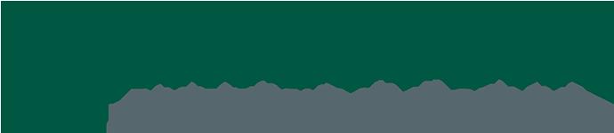 KINGSTONE DA Logo